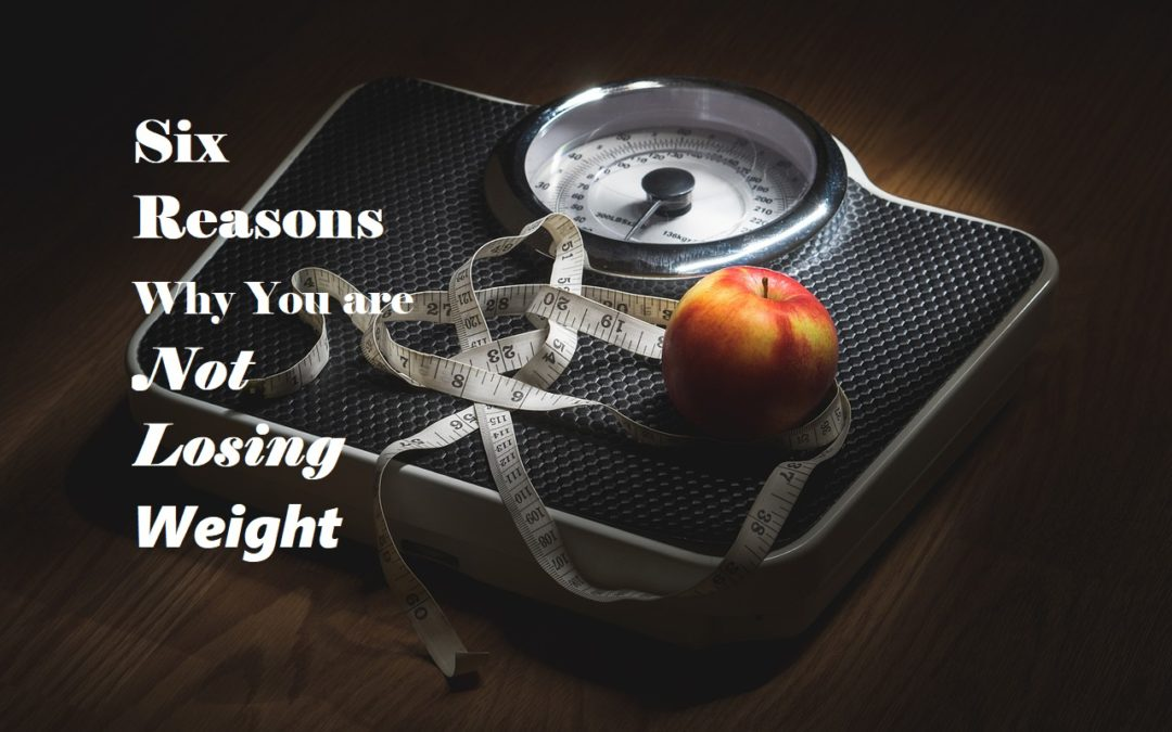 Six Reasons Why You are not Losing Weight