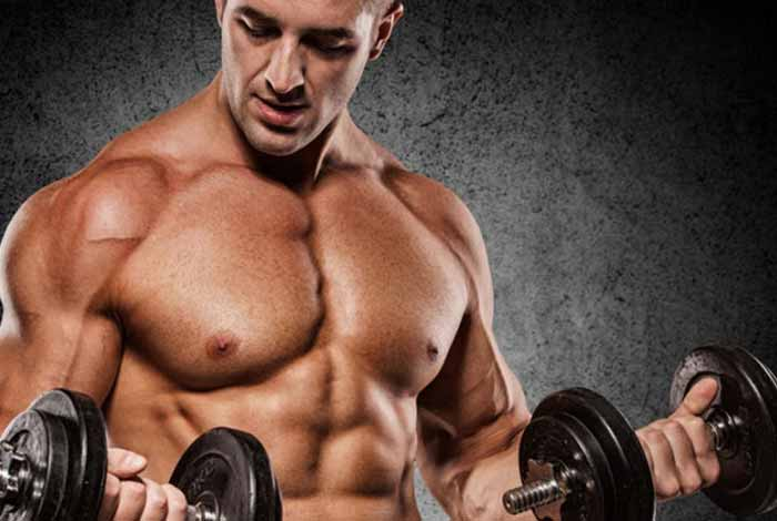 Tips to Gain Lean Muscle Mass